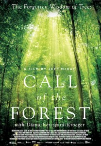 Cover image of Call of the Forest DVD