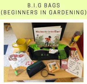 Big Bags (Beginners in Gardening)