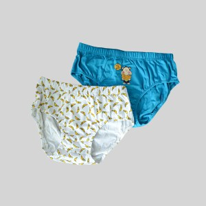 Rider Lifestyle Brief Kids R308BB Multi Colour Box 2 in 1 Boys