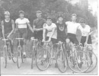zolotye-kolesa3