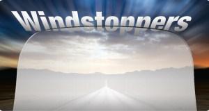 web-WindshieldMain2