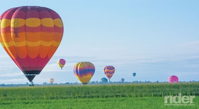 Hot air balloons landing in the fields one summer morning.