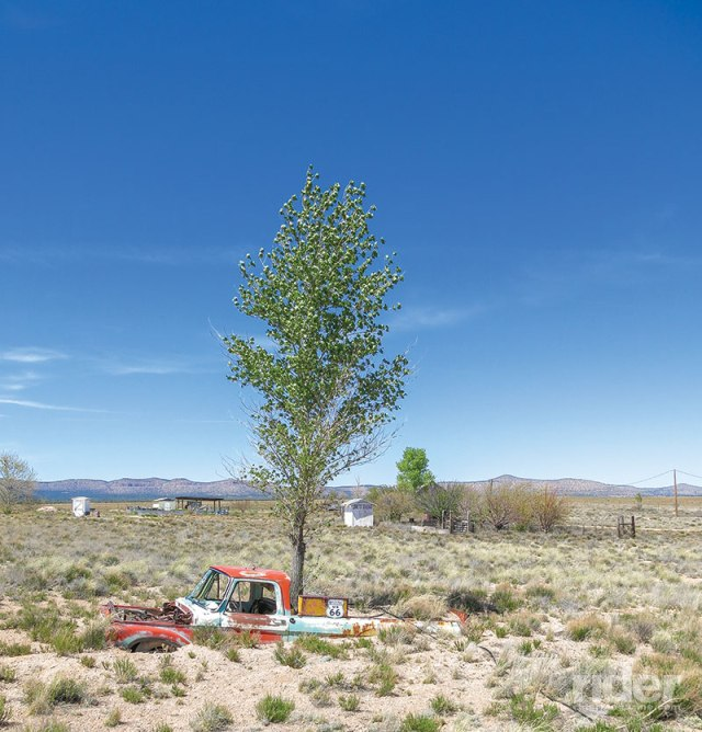 If you leave your pickup truck parked too long in the Arizona desert you don't get a ticket ... but you may have a tree growing out of the bed.