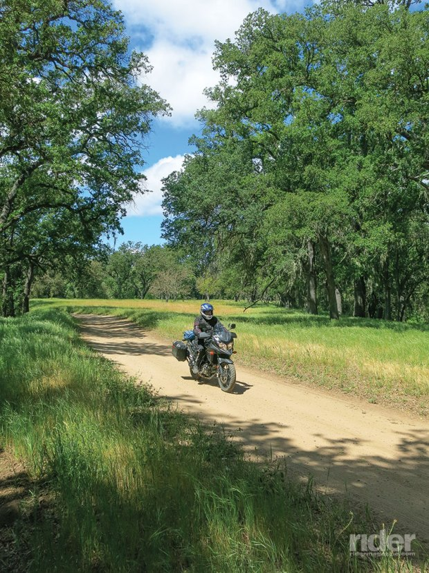 "Modern-day ""adventure bikes,"" like this Suzuki V-Strom 650XT, are happiest when adventuring along reasonable dirt roads."
