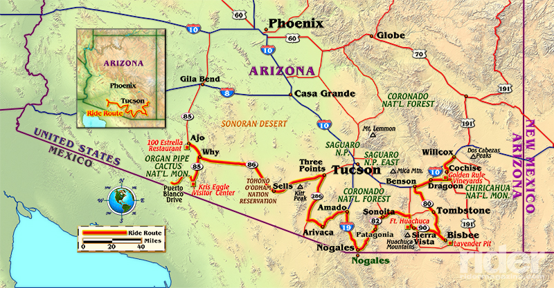 What It Means To Live And Survive In The Desert Sonoran Desert