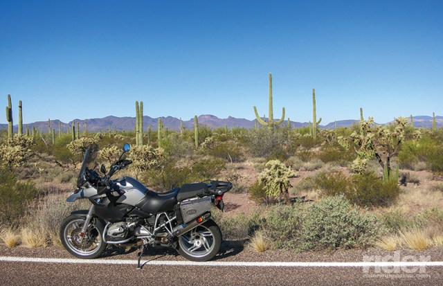 The farther south you ride in Arizona, the more diverse the palette of cacti becomes.