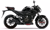 Yzf -r25 naked
