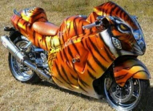 tiger motorcycle