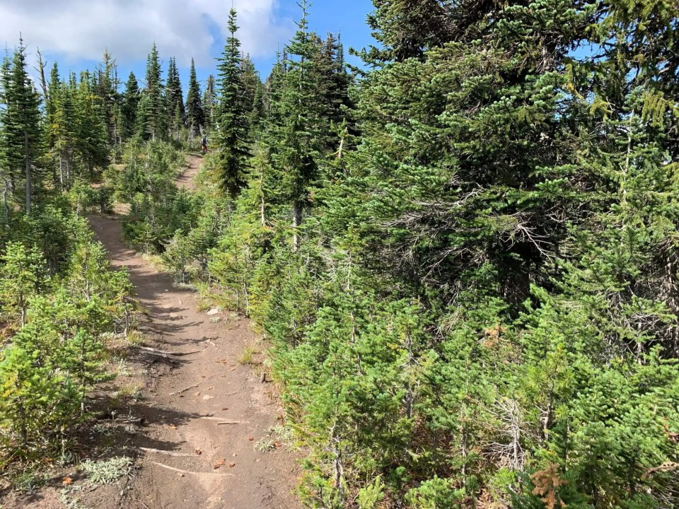 nearing the high point of the Seven Summits trail