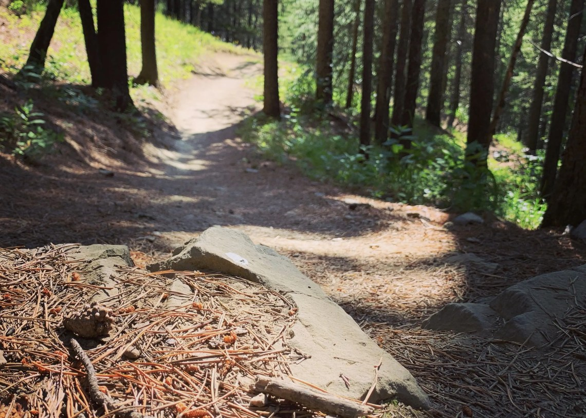 many of the trails in West Bragg Creek were built by volunteer trail builders