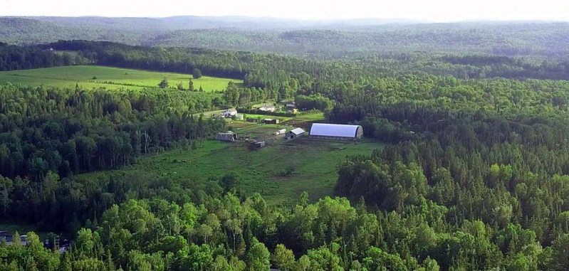 Cabin rentals near Algonquin Park. Trail Riding & Public Riding Stables. Horse Camps & Equestrian Programs near Algonquin Park, Ontario. Close to Toronto, Barrie, Ottawa, Orillia, Kingston & London.