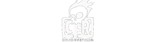 cheetah_factory_racing