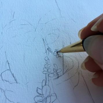 drawing up close IMG_2396 - web