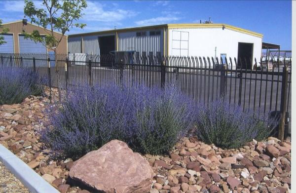 xeriscaping ridgeline landscaping