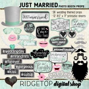 Ridgetop Digital Shop | Just Married - Mint Photo Props | Wedding Photo Booth