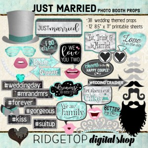 Ridgetop Digital Shop | Just Married - Turquoise Photo Props | Wedding Photo Booth
