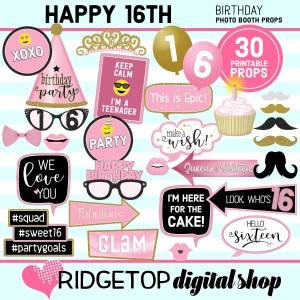 Ridgetop Digital Shop 16th Birthday Printable Photo Booth Props