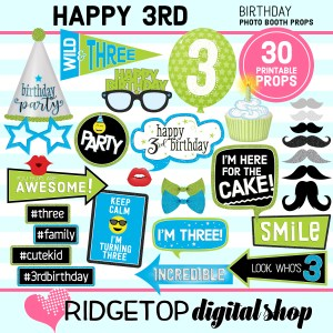 Ridgetop Digital Shop | 3rd Birthday Printable Photo Booth Props