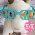 5K & 10K Glasses
