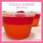Tequila Sunrise Jello Shot Recipe