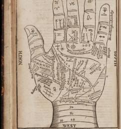a seventeenth century woodcut illustration of chiromancy lines for palm reading  [ 1066 x 1536 Pixel ]