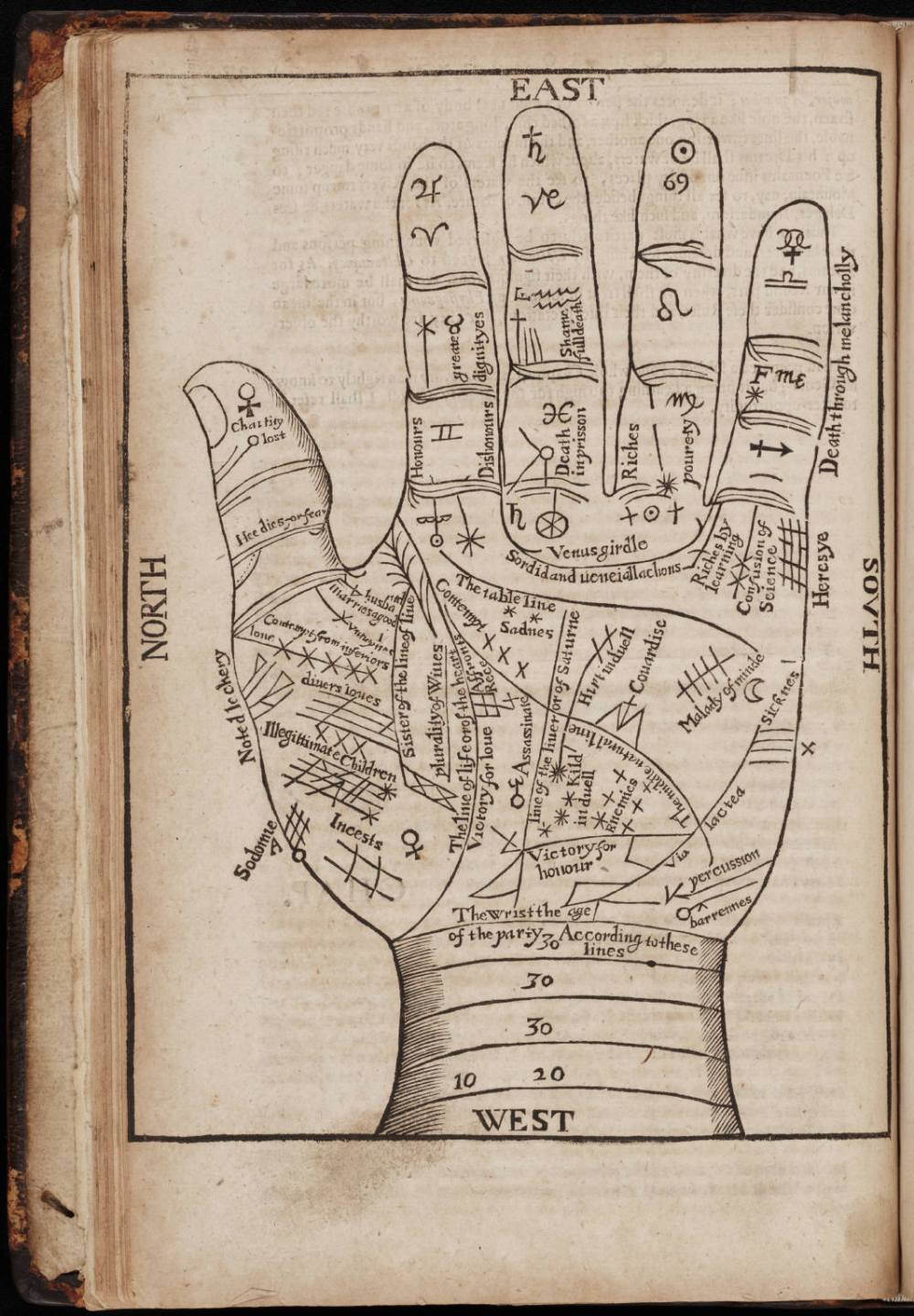 medium resolution of a seventeenth century woodcut illustration of chiromancy lines for palm reading