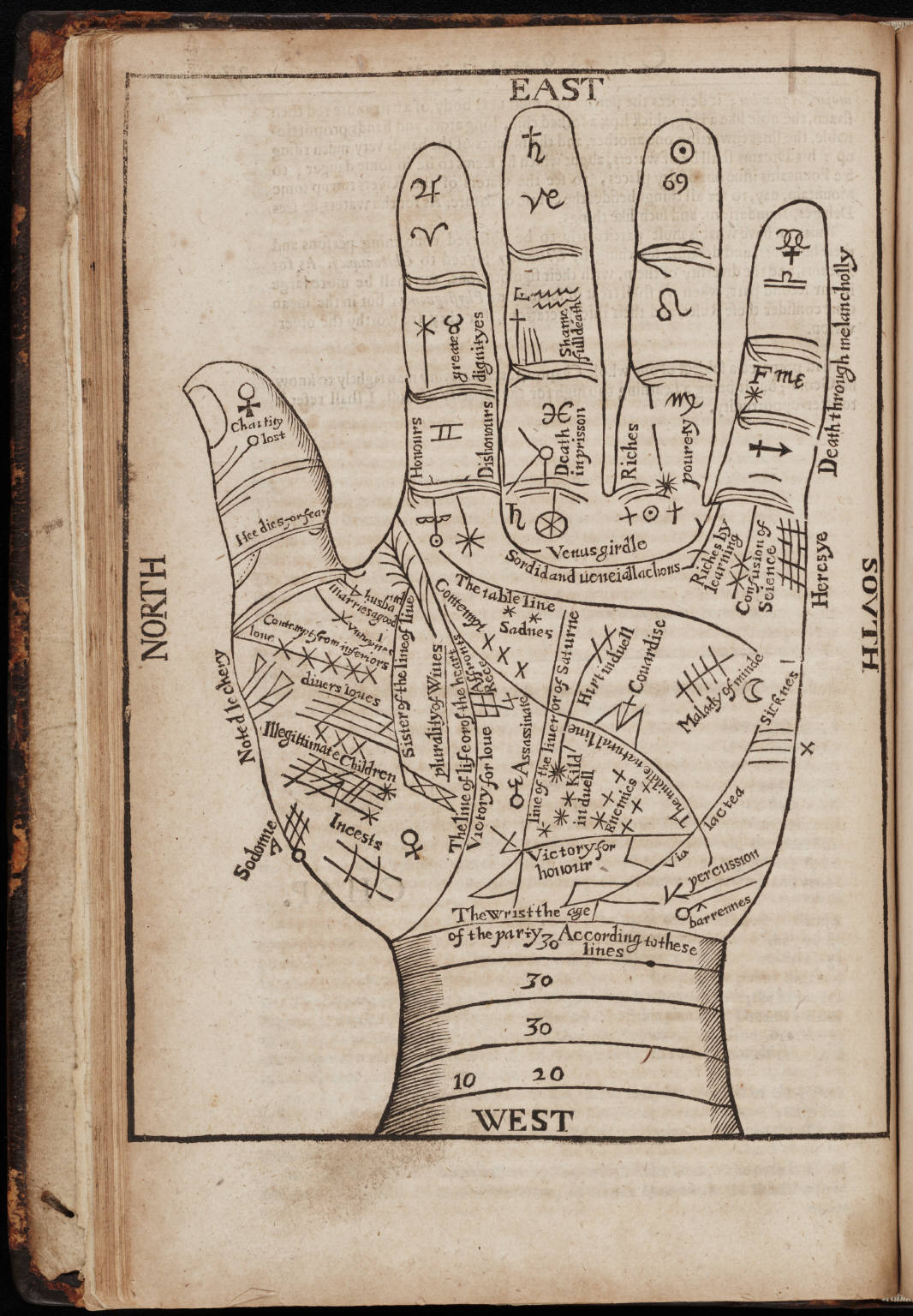 hight resolution of a seventeenth century woodcut illustration of chiromancy lines for palm reading
