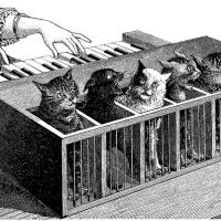 Katzenklavier: The Cat-Piano