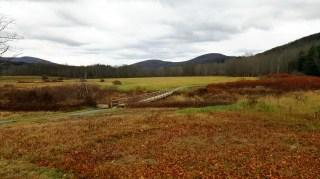 Windham Path