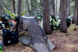 Camping in the pines. Nice to have a busy campsite to make us feel we have safety in numbers in case the Black Bears come for food. Woke up with condensation icicles hanging in the tent - it got down to -5C! Cold cold morning high up in Yosemite, CA, USA
