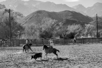There happened to be a Western Film festival in Lone Pine when we arrived. Apparently the only weekend of the year when something actually happens there. Impressed by the lasso skills at our first rodeo. Lone Pine, CA, USa
