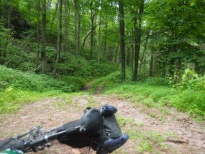 Virginia Mountain Bike Trail