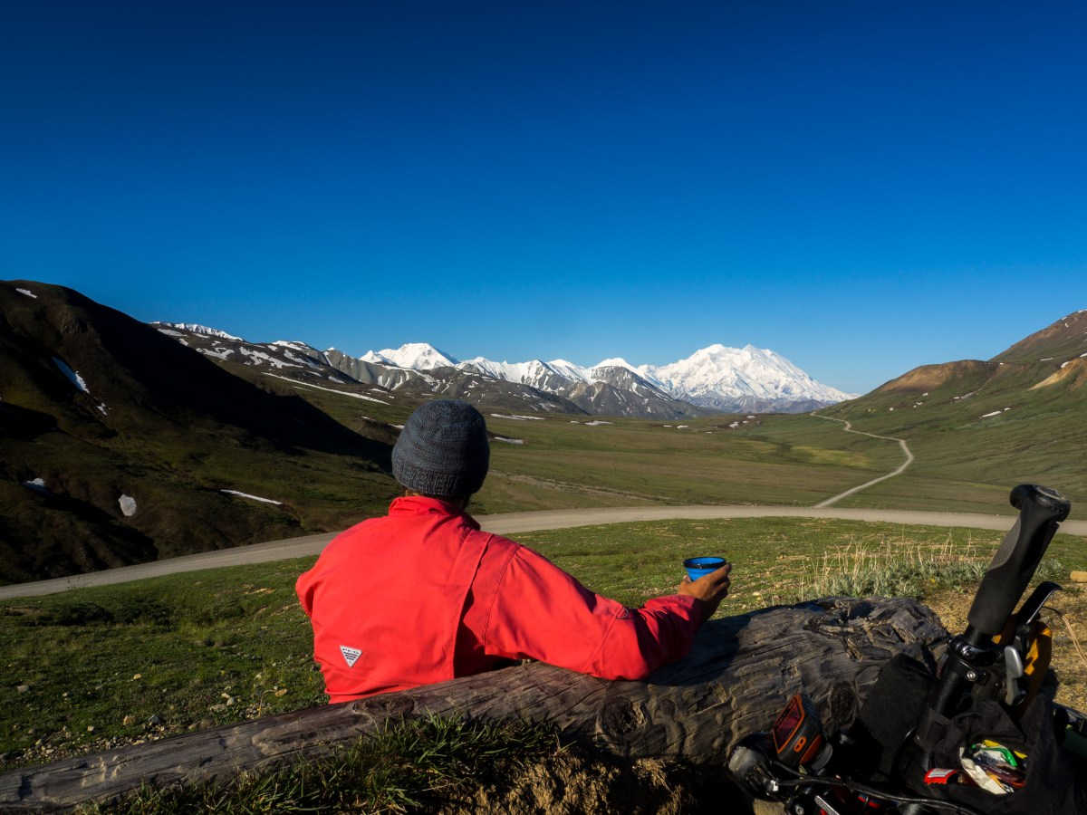 In the Valley of Giants: Cycling the Denali Park Road