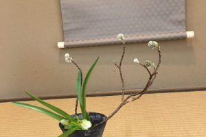 東慶寺でお花のお稽古