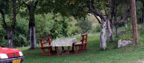 Ontbijt onder de bomen