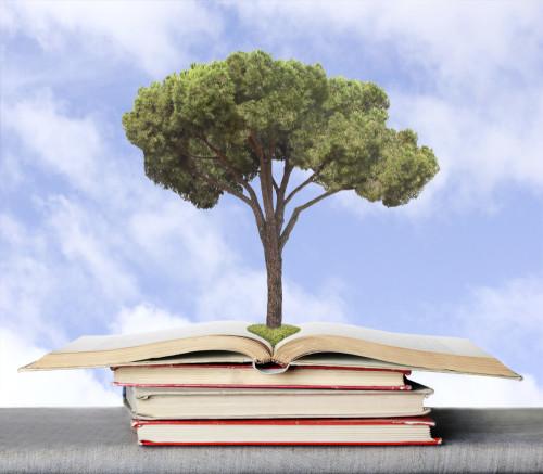 Verschil maken met impliciete kennis en ervaring