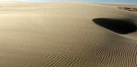 Zwemmen in een zee van zand