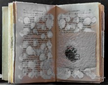 le-livre-efface-michele-riesenmey-10