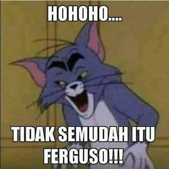 Meme Ferguso
