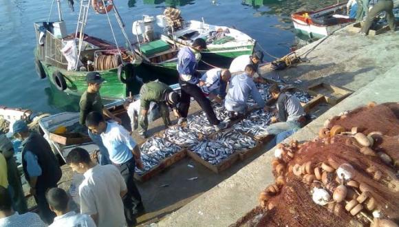 """الصّيد البحري في المغرب """"يُحتضر"""".. ومطالبُ بتدخلٍ وزاري عاجلٍ"""