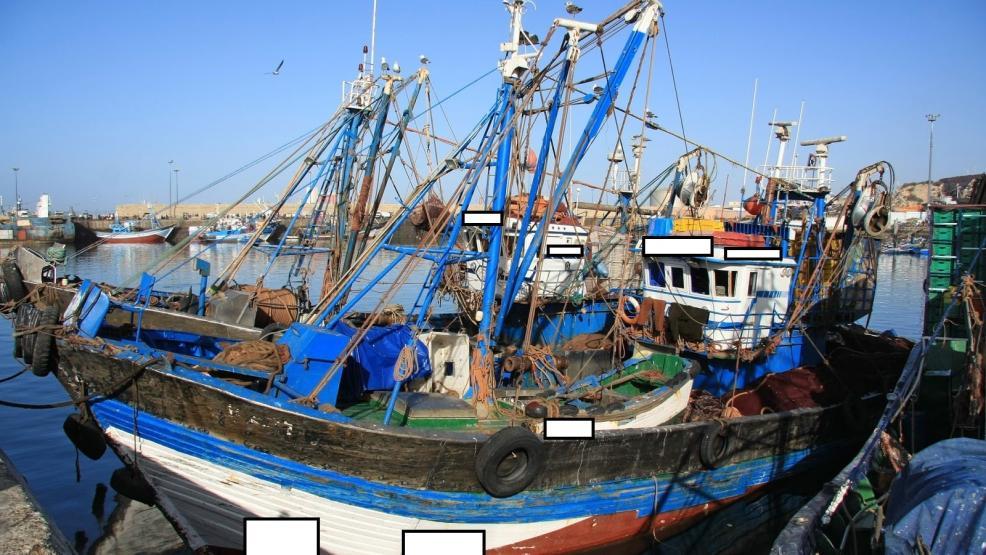 شرطة الموانئ تلاحق ربابنة السفن والصيادين المخالفين بعقوبات ثقيلة
