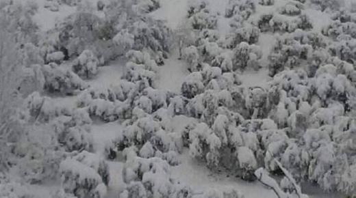 شاهد الصور: الطريق مقطوع بين قاسيطة و تازة بسبب الثلوج التي اعتلت جمال الطبيعة