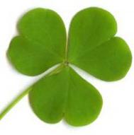 Benda keberuntungan