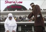 islam-law
