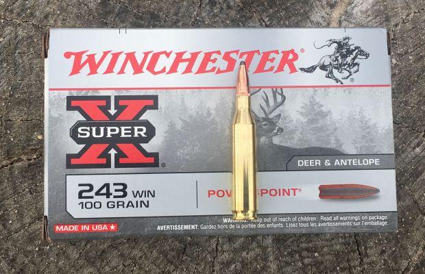 WIN 243 Winchester