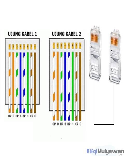 Gambar Urutan Kawat Kabel Straight Dalam Tutorial Cara Crimping Rj45