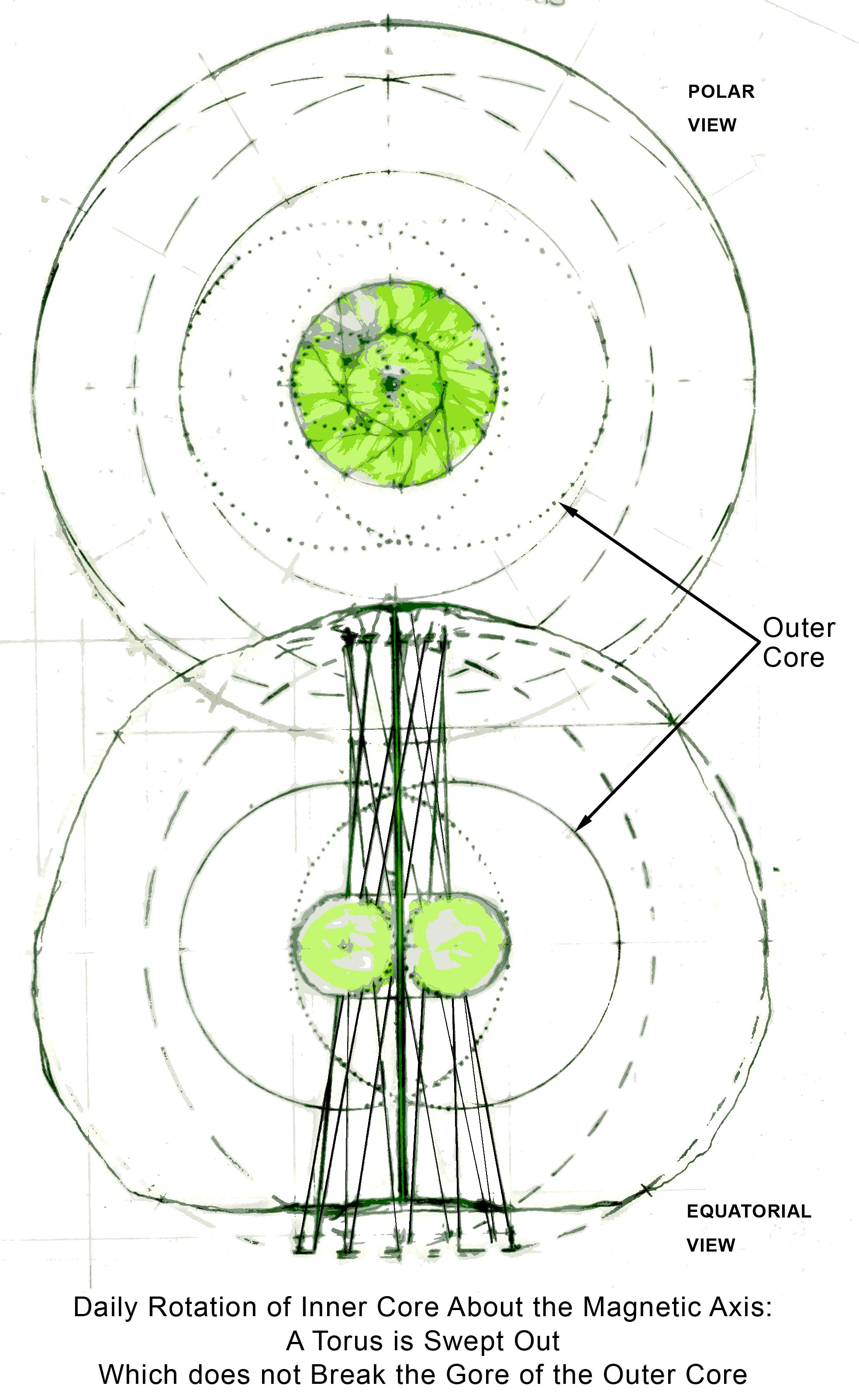 The Daily Torus of Earth's Inner Core