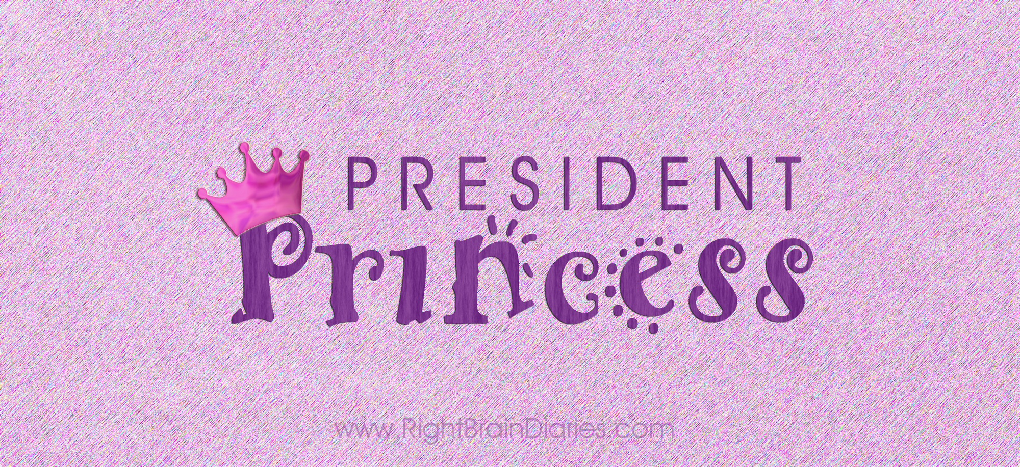 President Princess: an election fairy tale.
