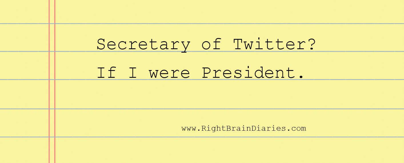 Secretary of Twitter? A plea to the President Elect.