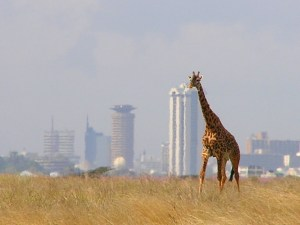 Nairobi tours and safaris